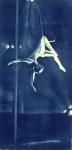 Michael David, Trapeze Artist